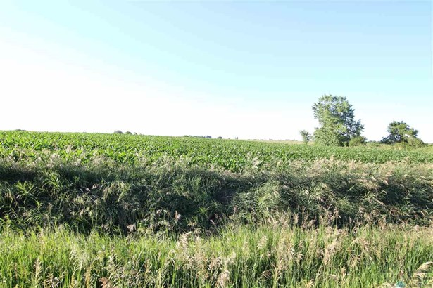 Resi Over 1 acre - Tea, SD (photo 1)