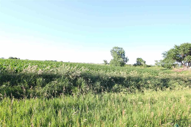 Resi Over 1 acre - Tea, SD (photo 3)