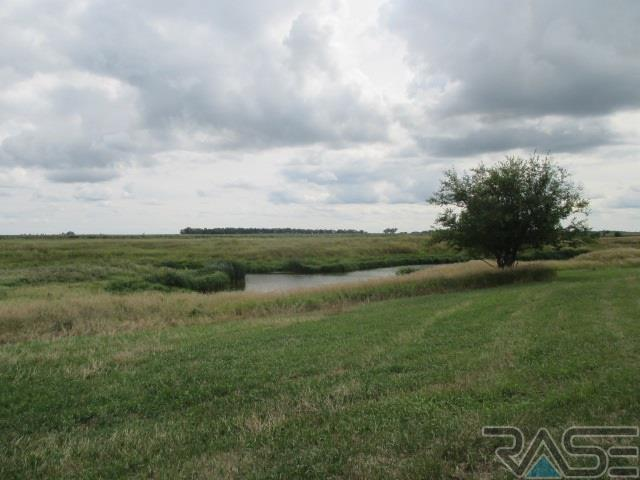Resi Over 1 acre - Canistota, SD (photo 2)