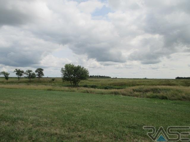 Resi Over 1 acre - Canistota, SD (photo 3)
