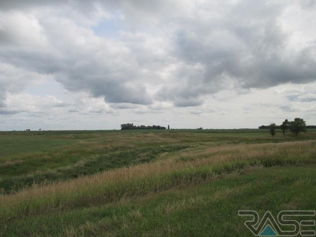 Resi Over 1 acre - Canistota, SD (photo 4)