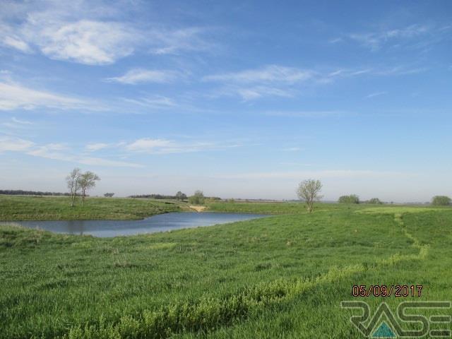 Resi Over 1 acre - Canistota, SD (photo 2)