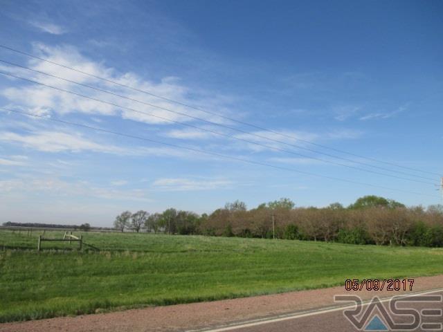 Resi Over 1 acre - Canistota, SD (photo 4)