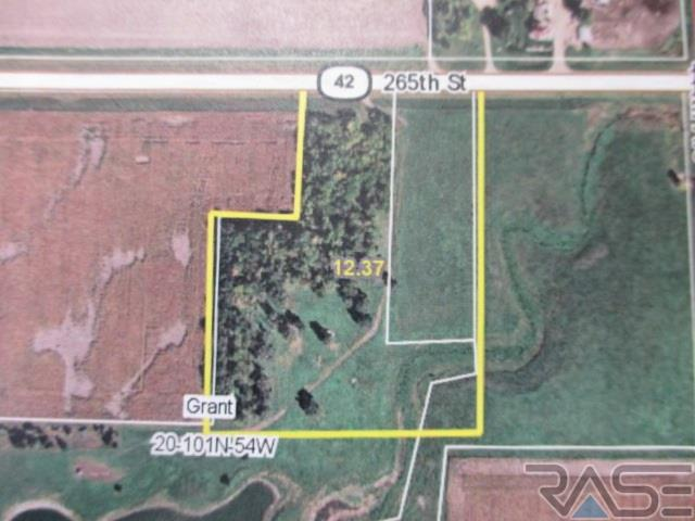 Resi Over 1 acre - Canistota, SD (photo 1)