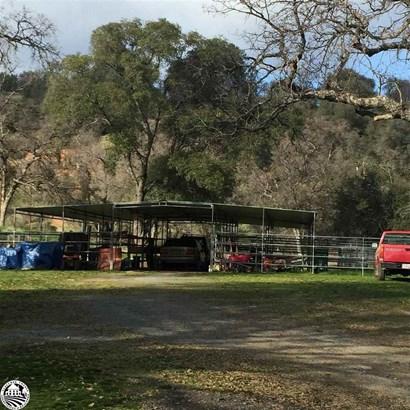 5146 Oak Ridge, Coulterville, CA - USA (photo 2)