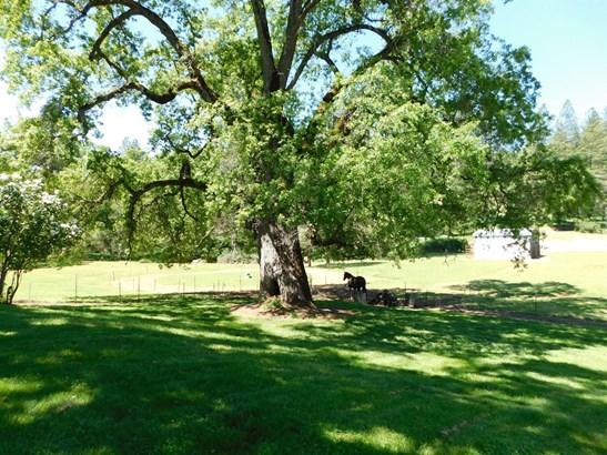 19030 Quercus Ct, Fiddletown, CA - USA (photo 2)