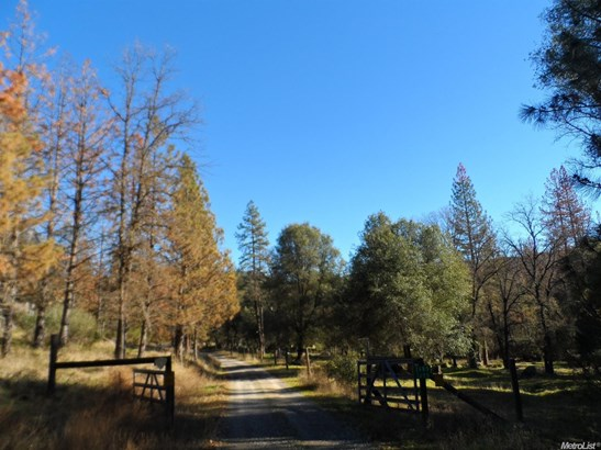 2675 Paso Pass Rd, Mariposa, CA - USA (photo 3)