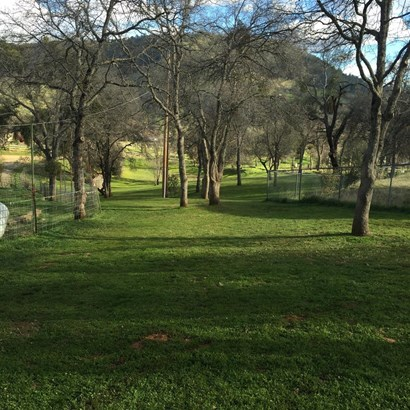 5146 Oak Ridge Rd, Coulterville, CA - USA (photo 3)