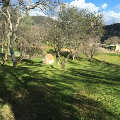 5146 Oak Ridge Rd, Coulterville, CA - USA (photo 5)