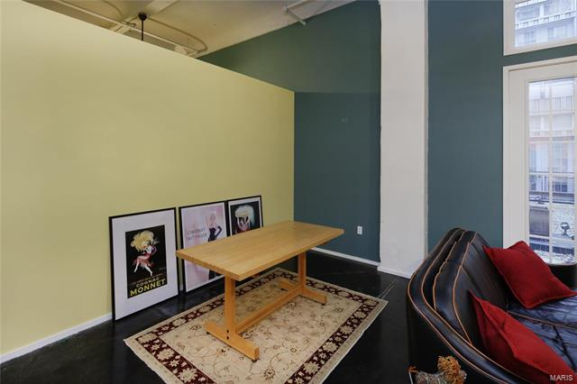 Condo, Traditional,Loft - St Louis, MO (photo 4)