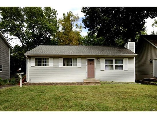 Dwelling, Single Family,Residential Lots - Webster Groves, MO (photo 1)