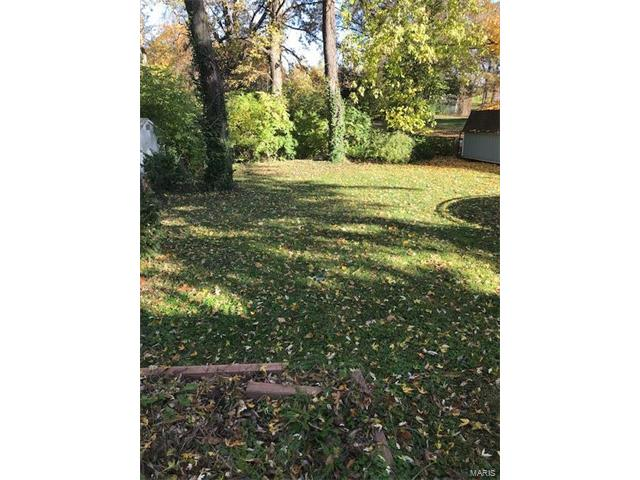 Dwelling, Single Family,Residential Lots - Webster Groves, MO (photo 2)