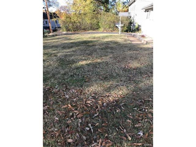 Dwelling, Single Family,Residential Lots - Webster Groves, MO (photo 4)