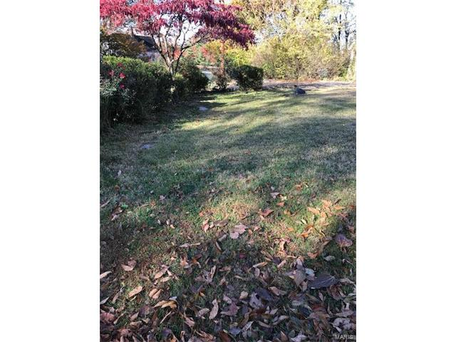 Dwelling, Single Family,Residential Lots - Webster Groves, MO (photo 5)