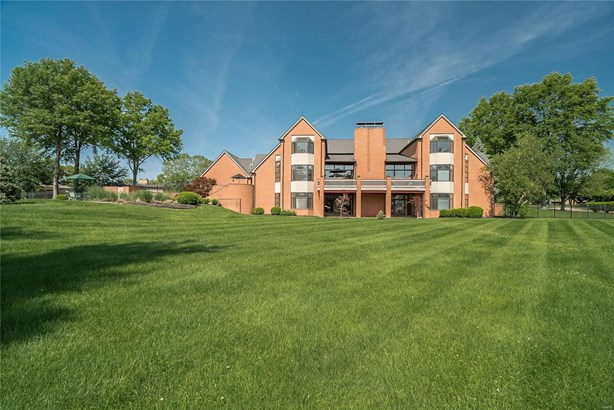 Residential, Contemporary - Town and Country, MO (photo 2)
