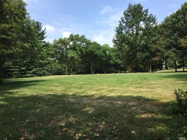 Single Family,Residential Lots - Ladue, MO (photo 1)