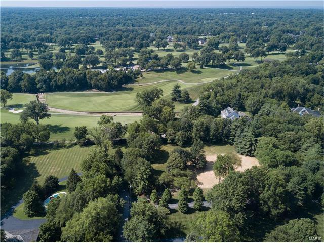 Single Family,Residential Lots - Ladue, MO (photo 3)