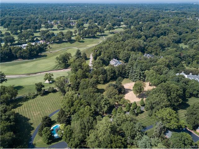 Single Family,Residential Lots - Ladue, MO (photo 4)