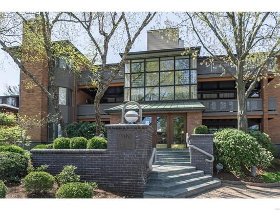 Contemporary,Garden Apartment, Condo - St Louis, MO