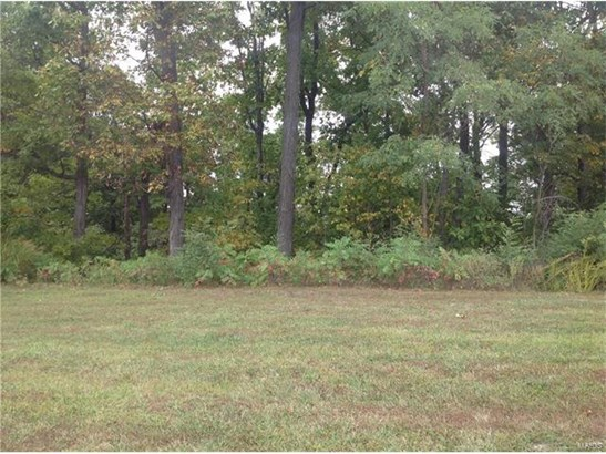 Single Family,Residential Lots - St Albans, MO (photo 1)