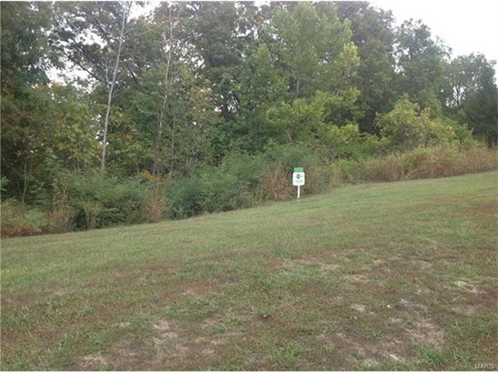 Single Family,Residential Lots - St Albans, MO (photo 3)