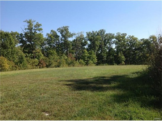 Single Family,Residential Lots, None - St Albans, MO (photo 1)