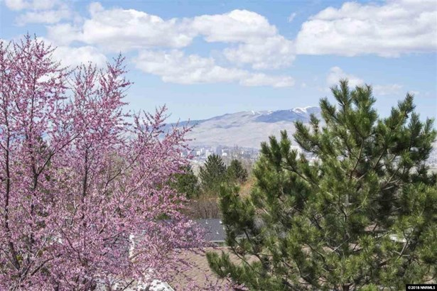 2355 Parkway Drive, Reno, NV - USA (photo 3)