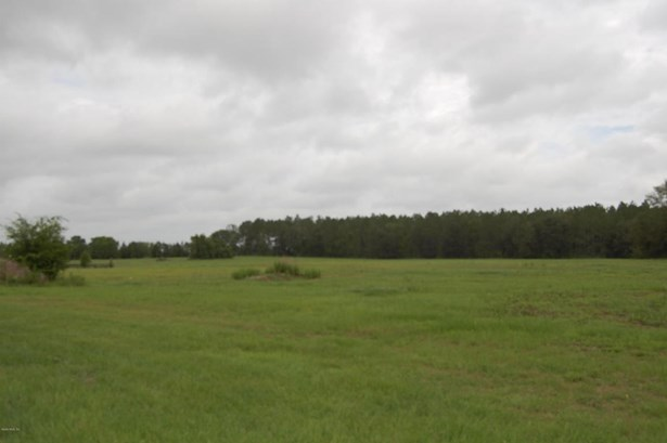 Vacant Land - Morriston, FL (photo 2)