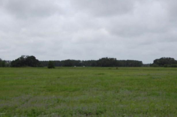 Vacant Land - Morriston, FL (photo 3)