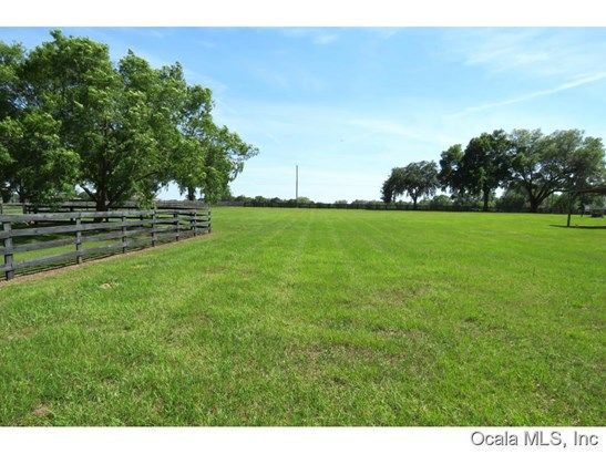 Farm - Ocala, FL (photo 4)