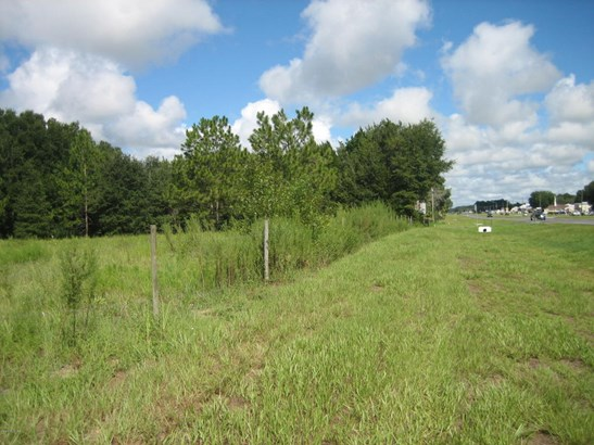 Vacant Land - Belleview, FL (photo 4)