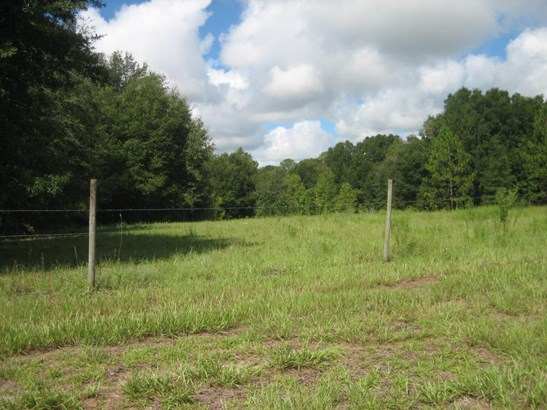 Vacant Land - Belleview, FL (photo 5)