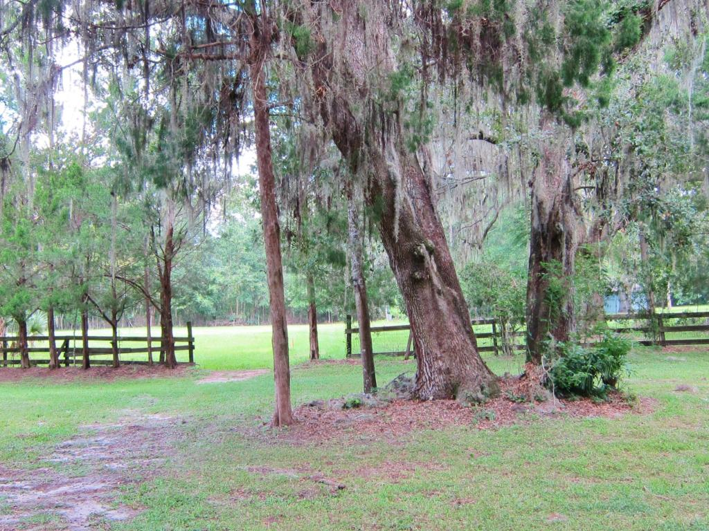Single Family Acreage - Ocala, FL (photo 2)