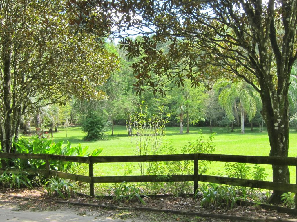 Single Family Acreage - Ocala, FL (photo 5)