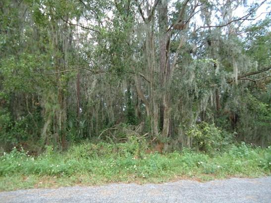 Vacant Land - Ocala, FL (photo 3)