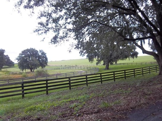 Vacant Land - Dunnellon, FL (photo 2)