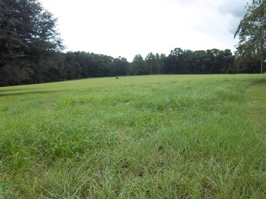Vacant Land - Dunnellon, FL (photo 4)