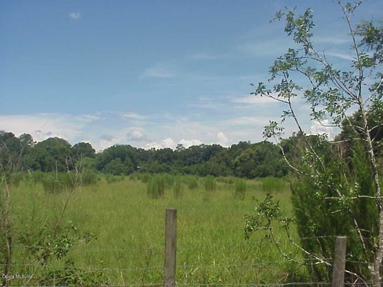 Vacant Land - Ocala, FL (photo 1)