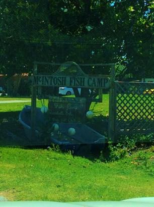 Vacant Land - McIntosh, FL (photo 1)