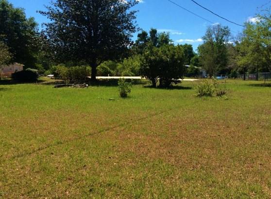 Vacant Land - McIntosh, FL (photo 3)