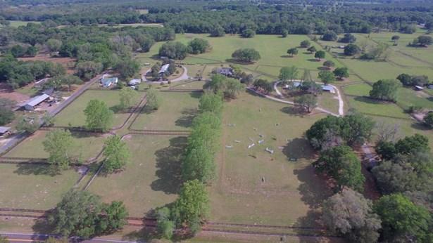 Farm - Morriston, FL (photo 1)