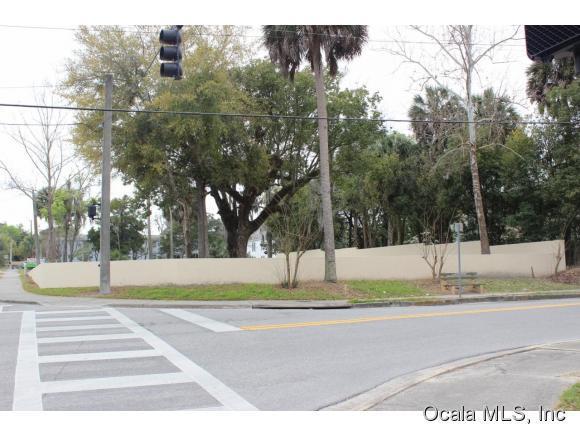 Vacant Land - Ocala, FL (photo 4)