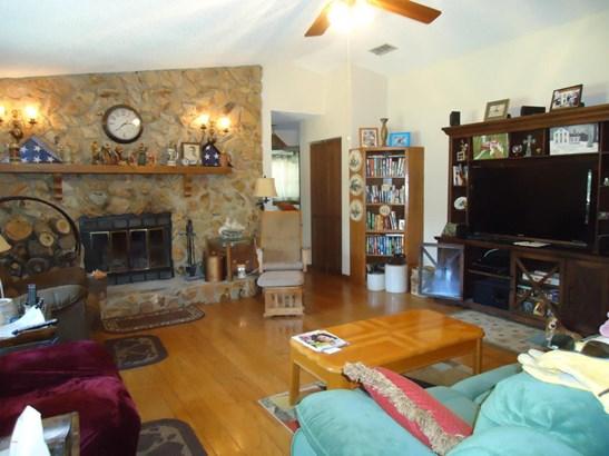 Single Family Acreage - Belleview, FL (photo 3)