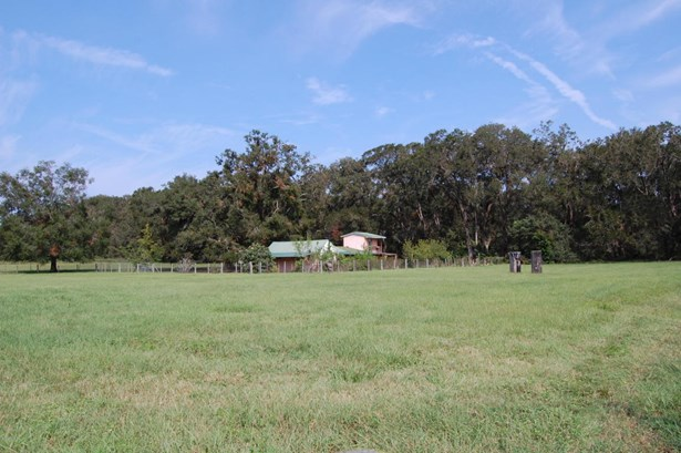 Farm - Citra, FL (photo 5)