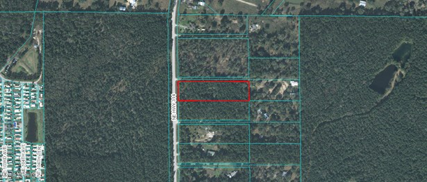 Vacant Land - Silver Springs, FL (photo 2)