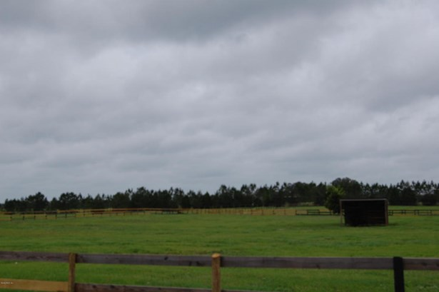 Farm - Morriston, FL (photo 4)