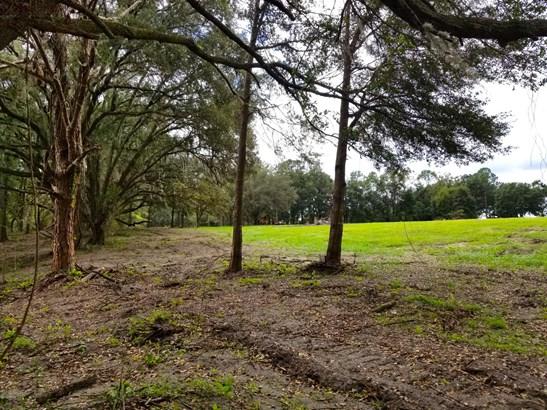 Vacant Land - Dunnellon, FL