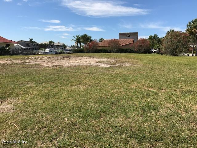 Vacant Land - New Port Richey, FL (photo 4)
