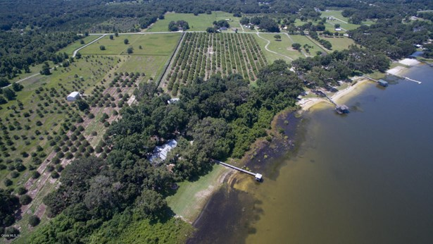 Vacant Land - Weirsdale, FL (photo 3)