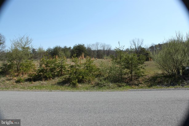 Vacant land - WINCHESTER, VA (photo 1)